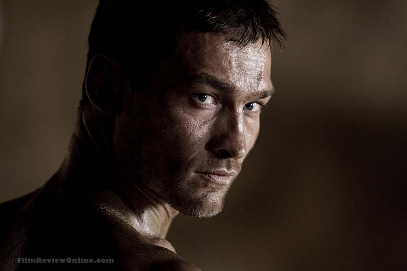 andy whitfieldAndy Whitfield