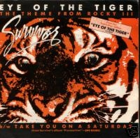 eye of the tiger resim 1