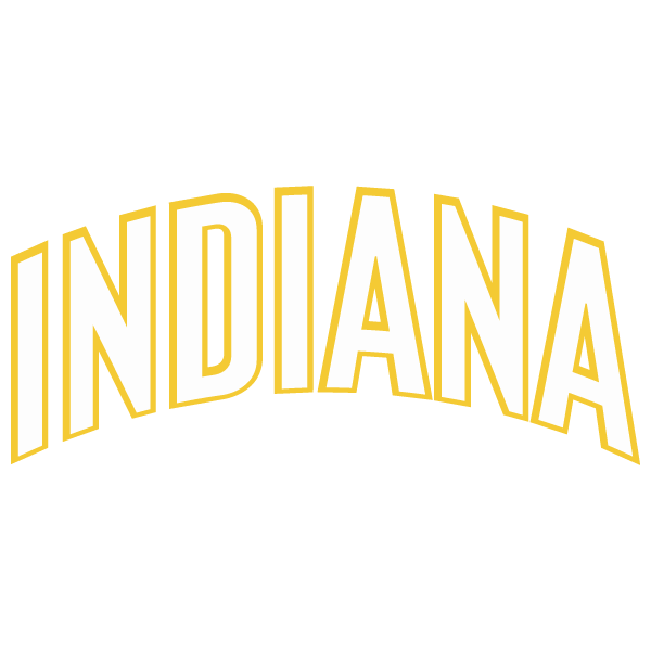 indiana pacers resim 2