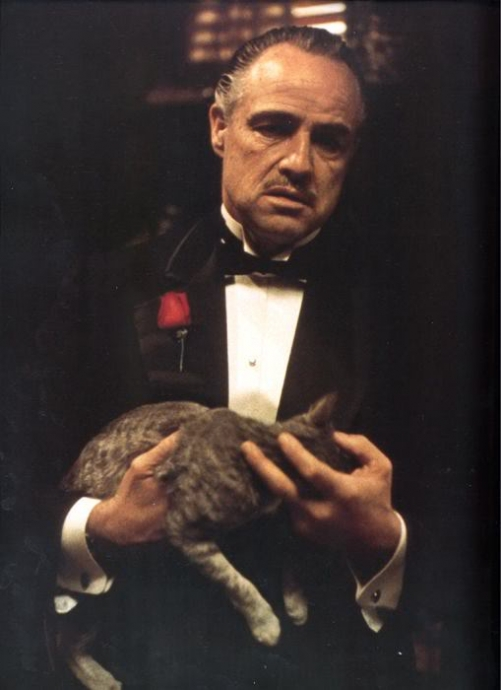the godfather resim 1